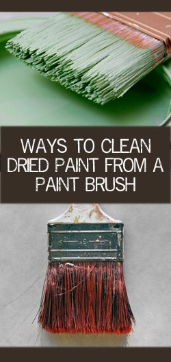 Ways to clean dried paint from a brush