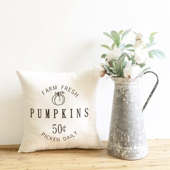 fall pillows decor