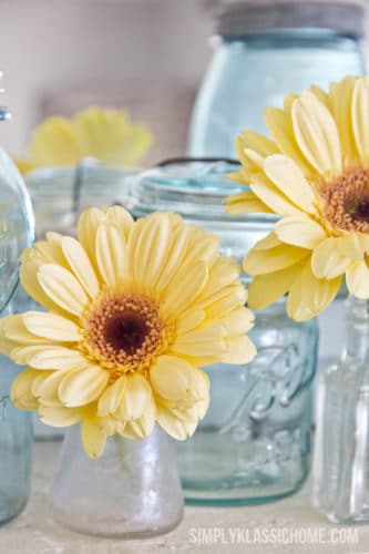 daisy flower in a mason jar